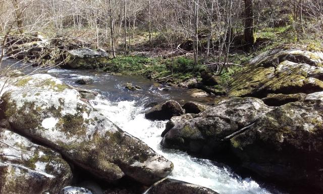 site naturel La Guenou